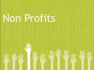 Social Media for Non-Profits services available thru LisaMarie Dias Designs.com