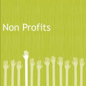 Social Media for Non-Profits services available thru LisaMarie Dias Designs.com
