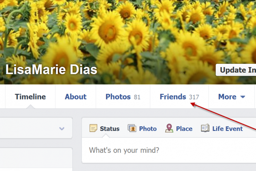 How to see your Facebook Friends