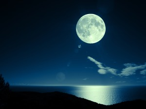 Moonlighting: Including Unrelated Experience in Your LinkedIn Profile